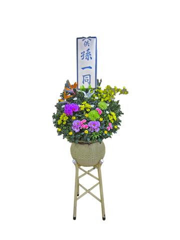 生花(ダルマ篭)